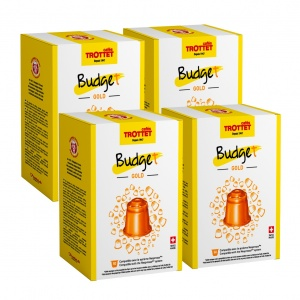 Budget Gold 4x50 capsules