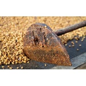 Salvador Divisadero Honey 250G