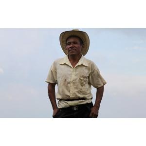 Salvador La Cumbre Honey