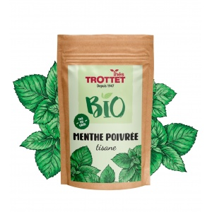 Organic Peppermint tea in...